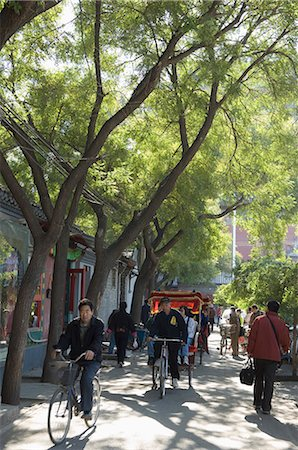 A tree lined avenue in a local neighbourhood Hutong area of Beijing, China, Asia Stock Photo - Rights-Managed, Code: 841-02716897