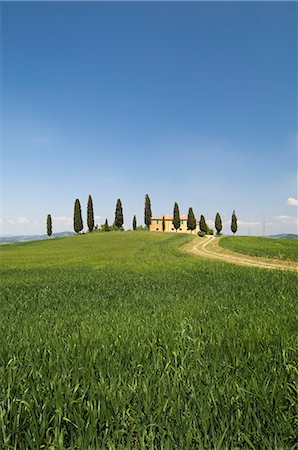simsearch:845-03720933,k - Countryside near Pienza, Val d'Orcia, Siena province, Tuscany, Italy, Europe Stock Photo - Rights-Managed, Code: 841-02717358
