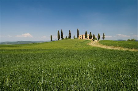 simsearch:845-03720933,k - Countryside near Pienza, Val d'Orcia, Siena province, Tuscany, Italy, Europe Stock Photo - Rights-Managed, Code: 841-02717359