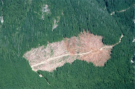 Logged area and surrounding forest from the air, British Columbia, Canada, North America Stock Photo - Rights-Managed, Code: 841-02824505