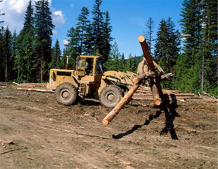 Loading logs, British Columbia, Canada, North America Stock Photo - Rights-Managed, Code: 841-02824647