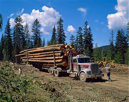 Logging truck, British Columbia, Canada, North America Stock Photo - Rights-Managed, Code: 841-02824657