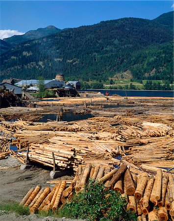Lumber mill near Chase, British Columbia, Canada, North America Stock Photo - Rights-Managed, Code: 841-02824660