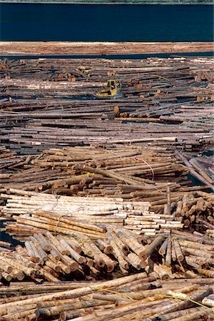 Sorting logs for mill, British Columbia, Canada, North America Stock Photo - Rights-Managed, Code: 841-02824679