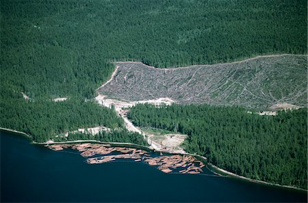 Logged area and surrounding forest from the air, British Columbia, Canada, North America Stock Photo - Rights-Managed, Code: 841-02824680