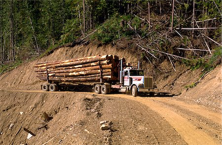 Logging truck, British Columbia, Canada, North America Stock Photo - Rights-Managed, Code: 841-02824969
