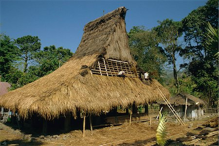 flores - Men thatching the roof of a house near Moni, Flores, Indonesia, Southeast Asia, Asia Stock Photo - Rights-Managed, Code: 841-02916886