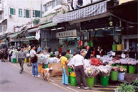 Flower market, Mong Kok, Kowloon, Hong Kong, China, Asia Stock Photo - Rights-Managed, Code: 841-02925385