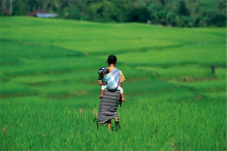 flores - Mother and child in the rice terraces of Ruteng, Flores, Indonesia, Southeast Asia, Asia Stock Photo - Rights-Managed, Code: 841-03067289