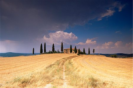 Cottage and cypress trees near Pienza, Val d'Orcia, Siena province, Tuscany, Italy, Europe Stock Photo - Rights-Managed, Code: 841-03060358