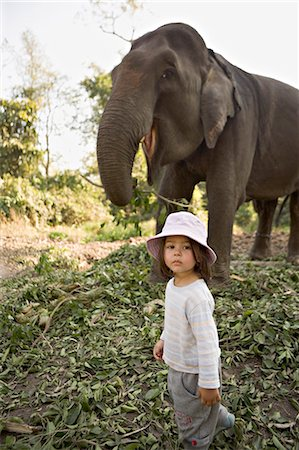 Two year old girl and the elephant that will take her on safari, at the Island Jungle Resort hotel, Royal Chitwan National Park, Terai, Nepal, Asia Stock Photo - Rights-Managed, Code: 841-03062395
