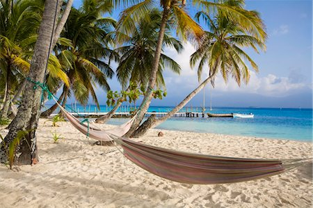 Hammocks hanging between palm trees, Kuanidup Grande, Comarca de Kuna Yala, San Blas Islands, Panama, Central America Stock Photo - Rights-Managed, Code: 841-03505200