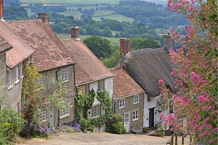 Gold Hill in June, Shaftesbury, Dorset, England, United Kingdom, Europe Stock Photo - Rights-Managed, Code: 841-03505407