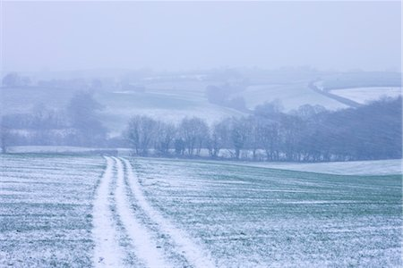 simsearch:845-03720933,k - Rolling farmland during a winter blizzard, Morchard Bishop, Devon, England, United Kingdom, Europe Stock Photo - Rights-Managed, Code: 841-03518714