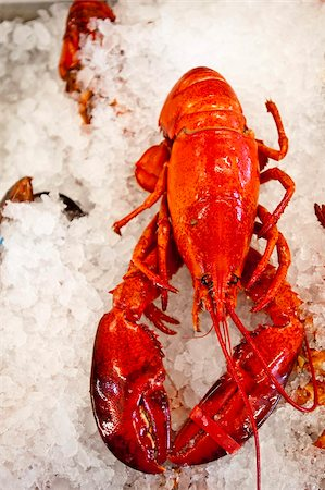 Lobster for sale in Alma, New Brunswick, Canada, North America Stock Photo - Rights-Managed, Code: 841-03675040