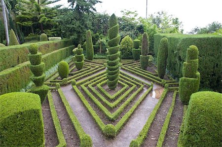 Topiary in formal garden, Botanical Garden, Funchal, Madeira, Portugal, Europe Stock Photo - Rights-Managed, Code: 841-03676171