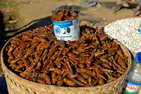 Grasshoppers for sale, Isalo National Park, Madagascar, Africa Stock Photo - Rights-Managed, Code: 841-03676751
