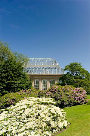The Palm House surrounded by rhododendrons and hydrangeas at The Royal Botanic Garden, Edinburgh, Scotland, United Kingdom, Europe Stock Photo - Rights-Managed, Code: 841-03867800