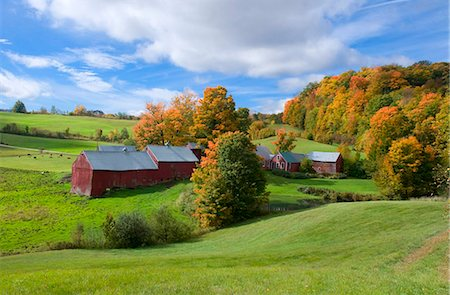 Autumn foliage surrounding red barns at Jenne Farm in South Woodstock, Vermont, New England, United States of America, North America Stock Photo - Rights-Managed, Code: 841-03867896
