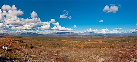 quest - Mother and daughter picking blueberries next to the Denali Highway, Interior Alaska, Autumn Stock Photo - Rights-Managed, Code: 854-05974339