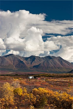 quest - Hunters in a motorhome park and camp next to the Denali Highway during hunting season, Interior Alaska, Autumn Stock Photo - Rights-Managed, Code: 854-05974340