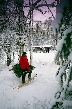 fun happy colorful background images - Man Carrying Christmas Tree and Axe Woods Snow Winter Cabin Southcentral Alaska Stock Photo - Rights-Managed, Code: 854-02955875