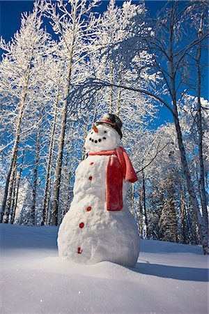 Snowman with red scarf and black top hat standing in front of snow covered Birch forest, winter, Eagle River, Alaska, USA. Stock Photo - Rights-Managed, Code: 854-02956134