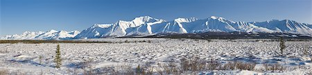 panoramic winter scene - Panoramic landscape along Broad Pass on a sunny day, Southcentral Alaska, Winter Stock Photo - Rights-Managed, Code: 854-03739674