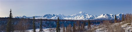 panoramic winter scene - Panoramic view of afternoon light over Mt. McKinley and the Alaska range, Denali State Park,  Southcentral Alaska, Winter Stock Photo - Rights-Managed, Code: 854-03739709