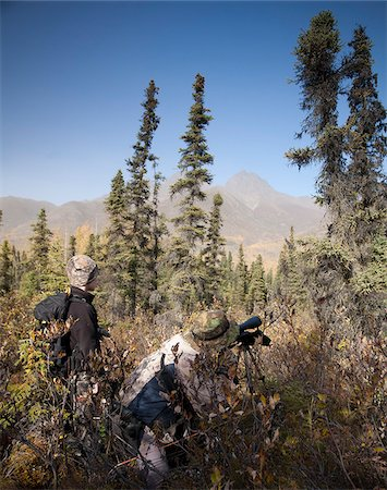 scope - Male bow hunter and son use a spotting scope to look for moose while hunting, Eklutna Lake area, Chugach State Park, Southcentral Alaska, Autumn Stock Photo - Rights-Managed, Code: 854-03844996