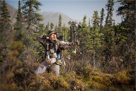 Male bow hunter aims with a compound bow while bow hunting in a Black Spruce forest in the Eklutna Lake area, Chugach Mountains, Chugach State Park, Southcentral Alaska, Autumn Stock Photo - Rights-Managed, Code: 854-03845011
