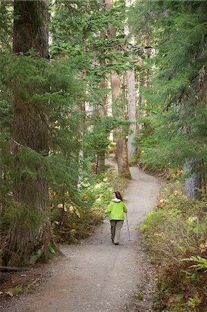 stick - Woman hiking on Winner Creek Trail in Spruce and Hemlock boreal rain forest near Girdwood, Chugach National Forest, Southcentral Alaska, Autumn Stock Photo - Rights-Managed, Code: 854-03845031