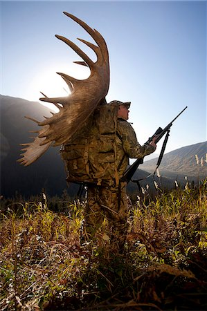 Moose hunter carries a large moose antler rack as he hikes out from his hunt in the Bird Creek drainage area, Chugach National Forest, Chugach Mountains, Southcentral Alaska, Autumn Stock Photo - Rights-Managed, Code: 854-03845061