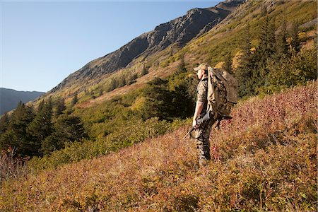 Male moose hunter stops to enjoy the view, Bird Creek drainage area, Chugach Mountains, Chugach National Forest, Southcentral Alaska, Autumn Stock Photo - Rights-Managed, Code: 854-03845077