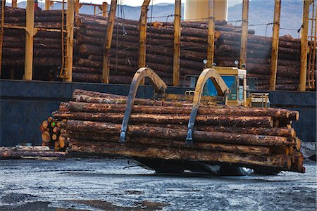 forestry - View of log ship being loaded with Sitka Spruce from Chiniak and Sequel Point at LASH dock in Women's Bay, Kodiak Island, Southwest Alaska, Autumn Stock Photo - Rights-Managed, Code: 854-03845268
