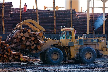 forestry - View of log ship being loaded with Sitka Spruce from Chiniak and Sequel Point at LASH dock in Women's Bay, Kodiak Island, Southwest Alaska, Autumn Stock Photo - Rights-Managed, Code: 854-03845270