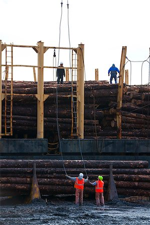 forestry - View of log ship being loaded with Sitka Spruce from Chiniak and Sequel Point at LASH dock in Women's Bay, Kodiak Island, Southwest Alaska, Autumn Stock Photo - Rights-Managed, Code: 854-03845271