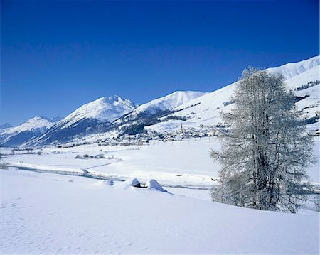 small town snow - Grindelwald valley, Switzerland Stock Photo - Rights-Managed, Code: 855-03255197