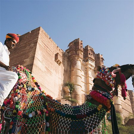rajasthan camel - Man riding on a camel in front of a fort, Meherangarh Fort, Jodhpur, Rajasthan, India Stock Photo - Rights-Managed, Code: 857-03192561