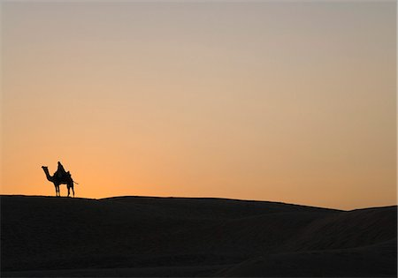 rajasthan camel - Silhouette of a person riding on a camel in a desert, Thar Desert, Jaisalmer, Rajasthan, India Stock Photo - Rights-Managed, Code: 857-03192633