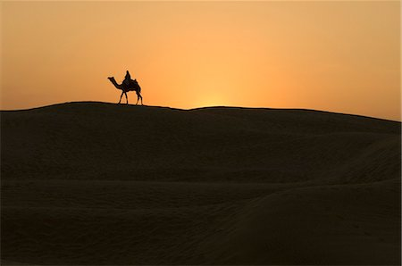 rajasthan camel - Two people riding camels, Jaisalmer, Rajasthan, India Stock Photo - Rights-Managed, Code: 857-03192659