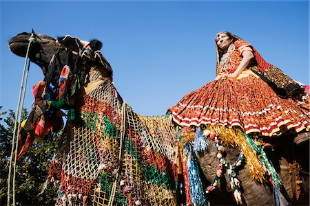 rajasthan camel - Woman riding on a camel, Chittorgarh, Rajasthan, India Stock Photo - Rights-Managed, Code: 857-03553536
