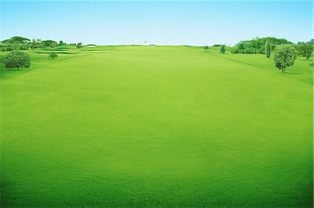 Golf Course Stock Photo - Rights-Managed, Code: 858-06756452