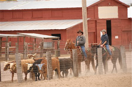 Two Cowboys Herding Cattle Stock Photo - Rights-Managed, Code: 858-03047666