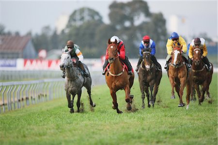 Group of horses racing Stock Photo - Rights-Managed, Code: 858-03049442