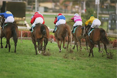 Group of horse racing in a horse race Stock Photo - Rights-Managed, Code: 858-03050480