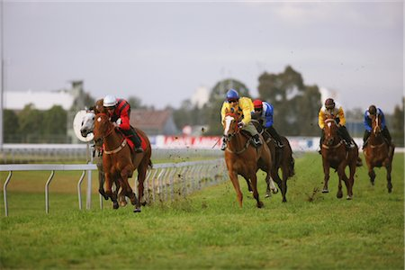 Group of horse racing in a horse race Stock Photo - Rights-Managed, Code: 858-03050481