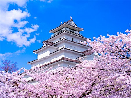 Tsuruga Castle, Fukushima Prefecture, Japan Stock Photo - Rights-Managed, Code: 859-06380125