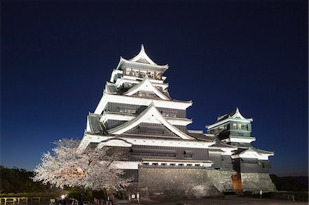 Night View Of Cherry Blossoms, Kumamoto Castle, Kyushu, Japan Stock Photo - Rights-Managed, Code: 859-06380154