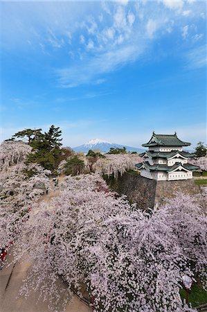 Hirosaki Castle, Aomori Prefecture, Japan Stock Photo - Rights-Managed, Code: 859-06380177